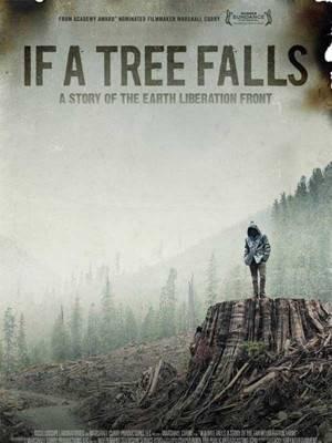 اگر یک درخت سقوط کند