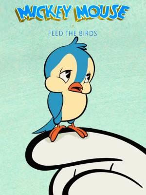 به پرنده ها غذا بده