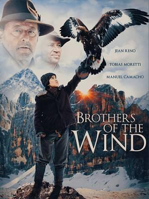 برادران باد