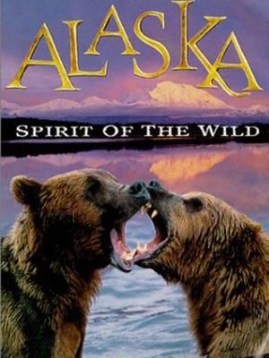 آلاسکا : روح وحشی