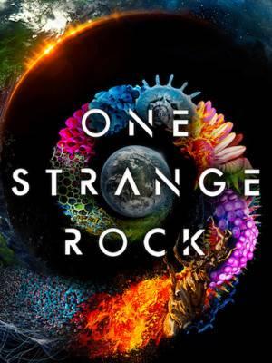 یک تخته سنگ عجیب - فصل 1 قسمت 1