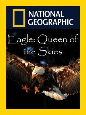 عقاب، پادشاه آسمان ها