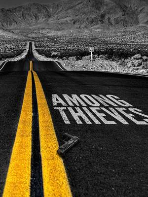 در جمع دزدها