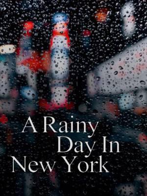 یک روز بارانی در نیویورک