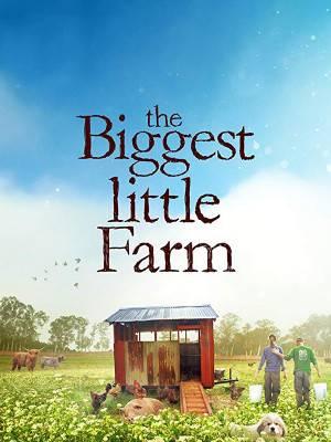 بزرگترین مزرعه کوچک