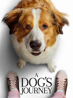 سرگذشت یک سگ