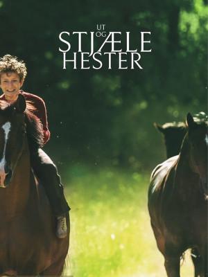 به هوای دزدیدن اسب ها