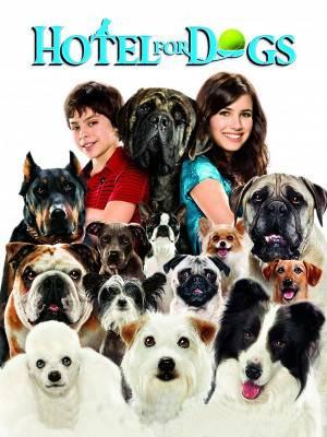 هتلی برای سگ ها
