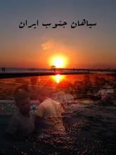 سیاهان جنوب ایران