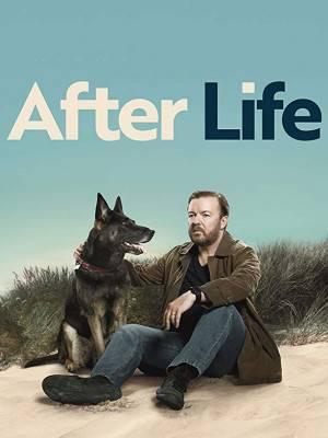 بعد از زندگی