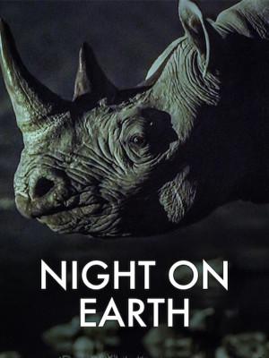 شب در روی زمین
