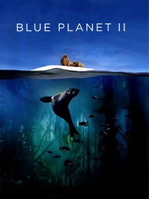 سیاره آبی 2