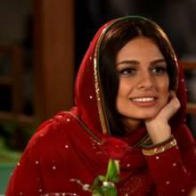 شایلی محمودی -