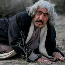 ناصر فروغ -